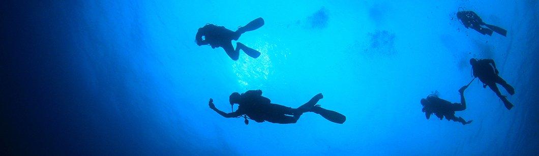 Scuba Diving Equipment Insurance